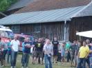 Fest 2014
